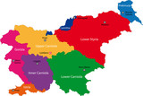 Map of administrative divisions of Slovenia poster