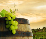 Fototapety Wine barrel and grape with vineyard in background