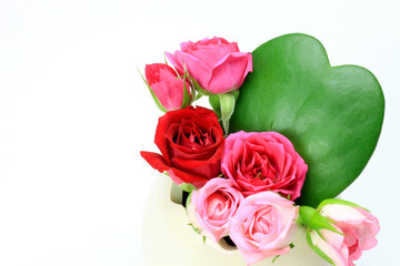 heart-shaped cactus and rose