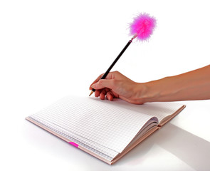 pink notebook and a  fluffy pen