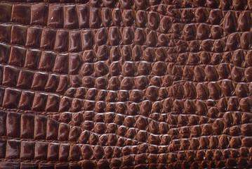 Textura de piel de cocodrilo.