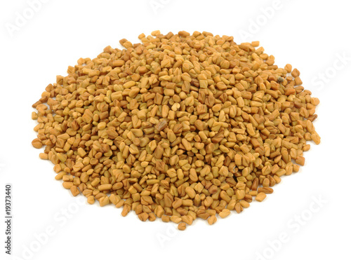 Fenugreek on white