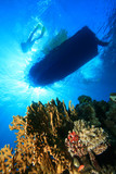 Scuba Divers and Dive Boat above coral reef poster