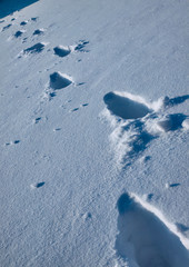 snow_footprint