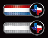 texas lonestar state striped and checkered banners poster