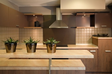 Beautiful and modern kitchen interior design.