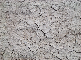 Grey cracked earth