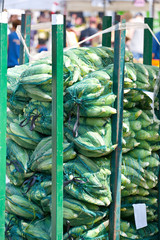 Sacs of corn ready for sale at the market