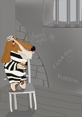 dog the prisoner and freedom