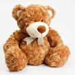 Furry teddy bear