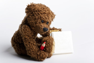 Bear Teddy with a pen and paper.