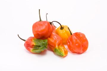 Mixed Caribbean Chillies