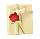 ivory gift box with a rose poster