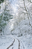 Snow covered track