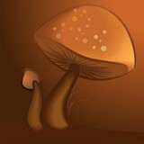 Illustration of two mushroom