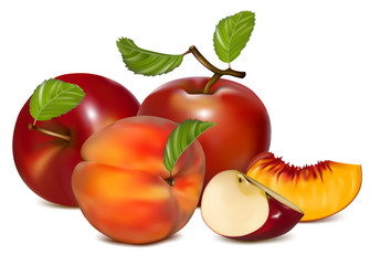 Vector illustration. Red apples and ripe peaches.