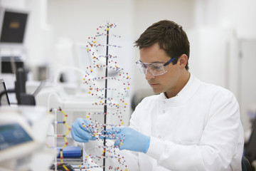 Scientist assembling DNA model in laboratory