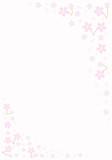 Cherry blossoms - 19568648
