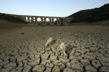 Drought and Maglova Aqueduct, Turkey-İstanbul