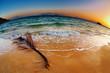 Tropical beach at sunrise, Thailand