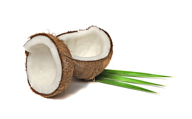 Coconut sections  isolated on white background