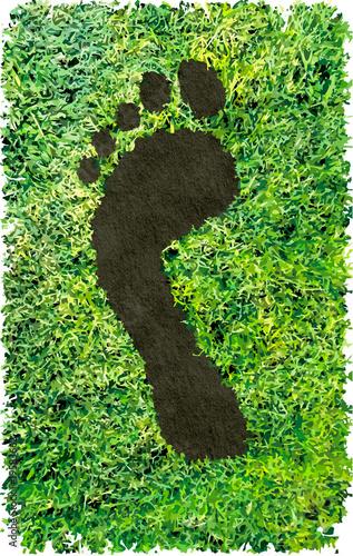 CO2 footprint