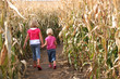 Sisters and a Corn Maze - 19589856
