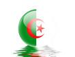 bandeira da Algéria
