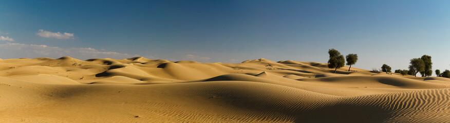 Desert Panorama II