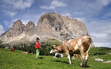 Montagna, Dolomiti, Alpi, Sassolungo, Val Gardena