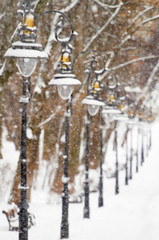 Lanterns in the winter park covered with snow