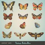Fototapety vector set: vintage butterflies