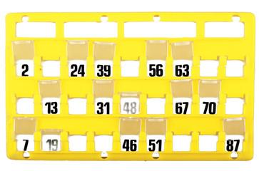 Cartella per Bingo 2 01 10