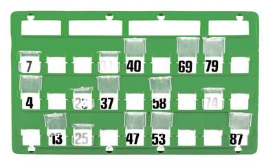 Cartella per Bingo 4 01 10