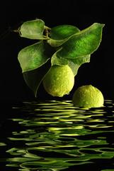Limone riflesso