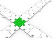 Green puzzle piece - green leadership