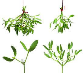 mistletoe set