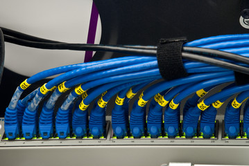 blue network wires