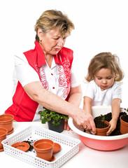 Pflanzen Oma mit Enkelin