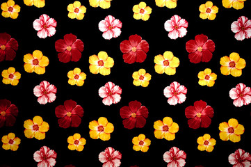 Background witn multicolored flowers