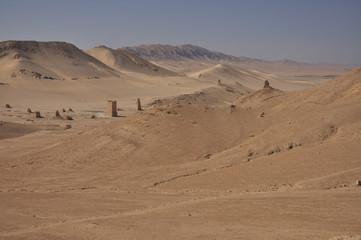 Palmyra desert