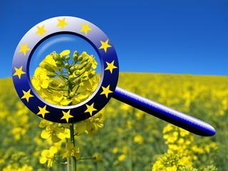 EU Kommission prüft Landwirtschaft, ländliche Entwicklung