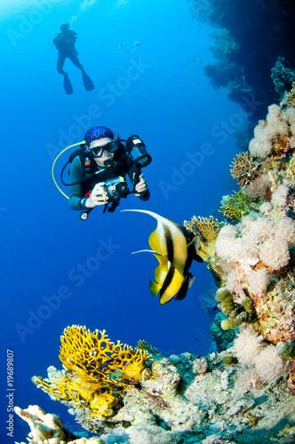 Fotobehang Duiken Plongeuse et photo sous marine, Mer Rouge, Egypte