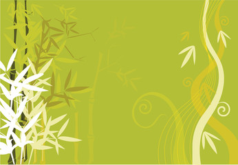 Bamboos  on floral designed background