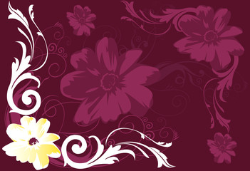 Flowers and swirls on floral background