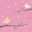 Birds couple. Valentines card.