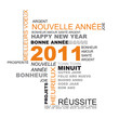 nouvel an 2011