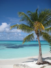 Maldivas, Playa salvaje