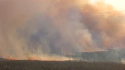 HD Smoke-screen from burning grass
