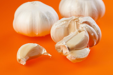 garlic on orange background